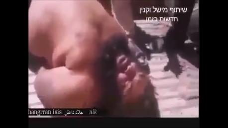 The Bulldozer of Fallujah'  captured.png