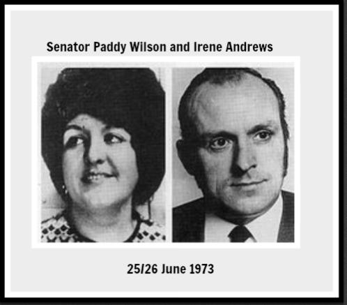 senator paddy wilson