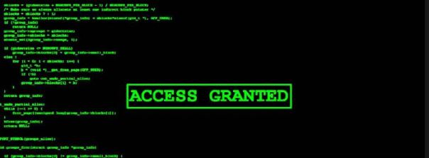 hackers access granted